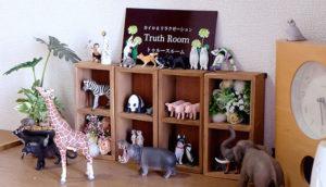 Truth Roomの玄関の小物